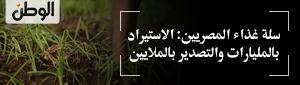 سلة غذاء المصريين: الاستيراد بالمليارات والتصدير بالملايين