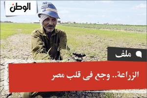 الزراعة.. وجع فى قلب مصر