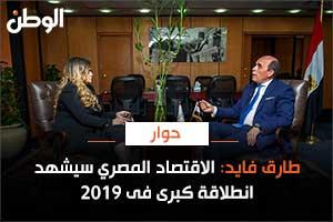 طارق فايد: الاقتصاد المصري سيشهد انطلاقة كبرى فى 2019