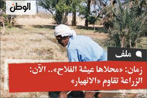 زمان: «محلاها عيشة الفلاح».. الآن: الزراعة تقاوم «الانهيار»