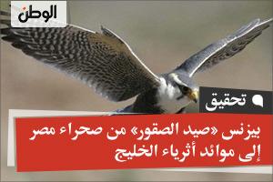 بيزنس «صيد الصقور» من صحراء مصر إلى موائد أثرياء الخليج