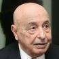 رئيس البرلمان الليبي