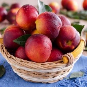 حقيقة تسمم الخوخ والمشمش.. وكيفية تطهير الفاكهة من المبيدات