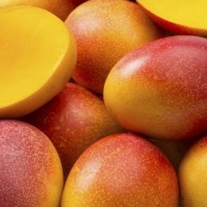 """حبة المانجو بـ60 ألف وعنقود العنب بـ182 ألف.. الفاكهة في اليابان """"نار"""""""