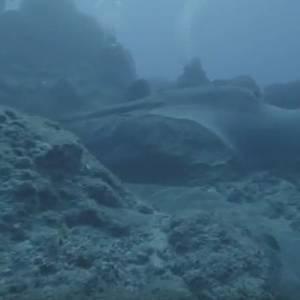 بالفيديو  رعب في الأعماق.. غواص يصور مخلوق مخيف في قاع المحيط