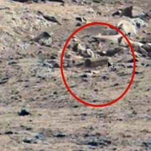 """هل صعد قدماء المصريين إليه.. العثور على """"تابوت فرعوني"""" في المريخ"""
