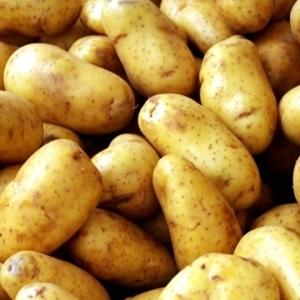 دراسة تكشف فائدة وشائعة عن البطاطس لصحة الإنسان