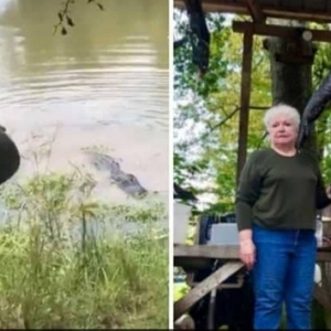بالفيديو|  بعد افتراسه حصانها الصغير.. عجوز تثأر من تمساح في أمريكا