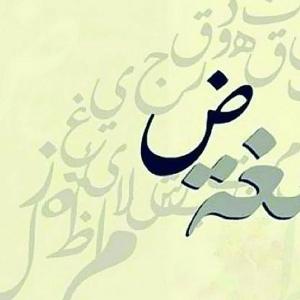 """في اليوم العالمي للغة """"الضاد"""".. 22 كلمة أجنبية مشتقة من العربية"""