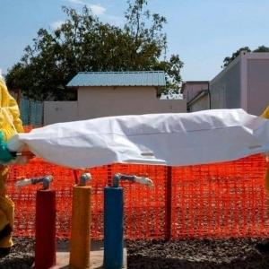 تحذير من مرض يشبه الإنفلونزا سيقتل 80 مليون شخص خلال 36 ساعة فقط
