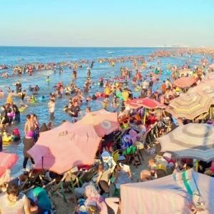 بعد ظهورها في شاطئ بالإسكندرية.. خطر الديدان على الإنسان وطرق العلاج