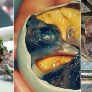 منها أكلة مصرية.. أغرب 10 وجبات يتناولها البشر حول العالم