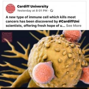 عميد القلب السابق: بشرى للبشرية.. اكتشاف خلايا تلتهم كل أنواع السرطان