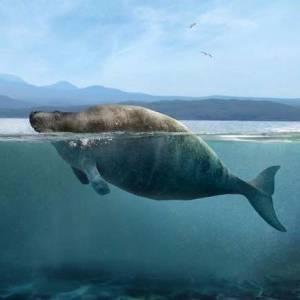 بالصور| حيوانات انقرضت من العالم لم نسمع عنها