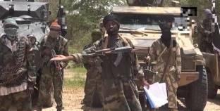 """بوكو حرام"" تذبح 18 شخصا وتسبي 10 نساء جنوب شرقي النيجر"