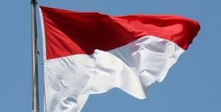 وزير الرياضة الإندونيسي يستقيل من منصبه بعد اتهامات بالفساد