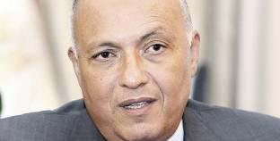 شكري: مصر تدفع بالحلول السياسية لتحقيق التسوية السلمية لأزمات المنطقة