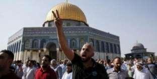 """قرار """"ترامب"""" يعيد فلسطين للشاشات العربية.. والعرب: وحَدنا"""