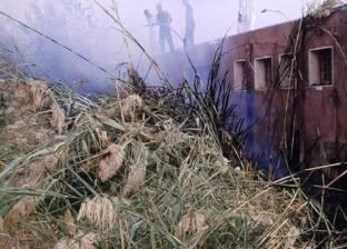 """رئيس """"شؤون البيئة"""": 10 آلاف محضر لمخالفي حرق قش الأرز"""
