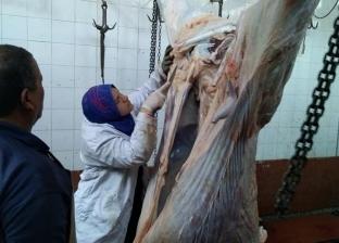 """""""بيطري الغربية"""" يشن حملات تفتيشية على المجازر للتأكد من سلامة اللحوم"""