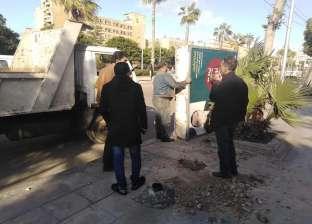 بالصور| حي وسط الإسكندرية يشن حملة لإزالة أعمدة الإنارة الآيلة للسقوط