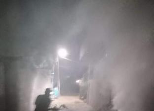 حملات لمكافحة الحشرات في قرى ومدن الغربية