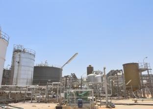باستثمارات 11.6 مليار جنيه.. افتتاح مصنع كيما الجديد بأسوان قريبا