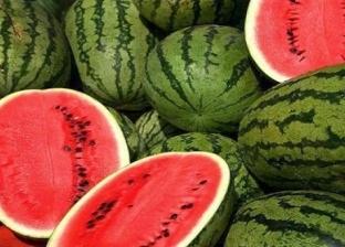 مسؤول بـ«الزراعة» عن البطيخ في الأسواق: آمن تماما وأتناوله يوميا