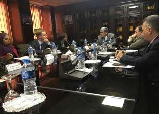 """رئيس """"الإفريقية للطاقة"""": نعمل على توفير قاعدة بيانات لمؤشرات كفاءة الطاقة"""