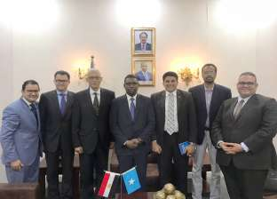 نائب وزير الخارجية يبحث التعاون المشترك مع عدد من وزراء الحكومة الصومالية
