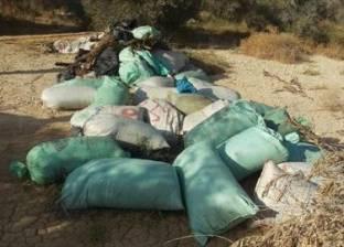 ضبط مخزن بداخله 70 جوالا لنبات البانجو المخدر في جنوب سيناء
