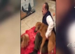 """خالد الصاوي: عندي 5 كلاب.. و""""البلدي"""" شديد الذكاء وصايع وشوارعي"""