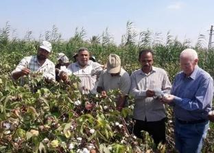 """""""زراعة المنوفية"""" تنظم ندوات إرشادية لزيادة إنتاج الحاصلات الزراعية"""
