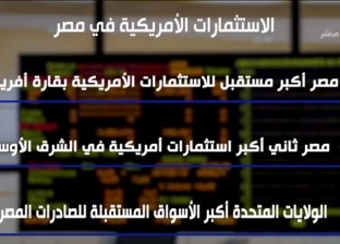 """DMC"" تعرض إنفوجرافا عن الاستثمارات الأمريكية في مصر"