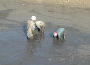 """مصدر بـ""""الثروة السمكية"""" بدمياط: """"قنال البط"""" يعمل بشكل طبيعي"""