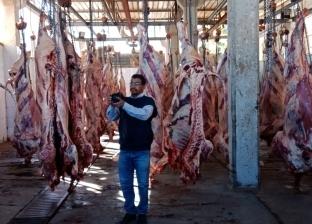 """""""الزراعة"""": زيادة المحاجر البيطرية في أبو سمبل لـ23 محجرا"""