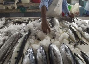أسعار السمك اليوم السبت 16–2-2019 في مصر