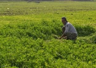 مطالب بعودة دور الإرشاد الزراعي في مساعدة الفلاحين