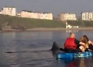 بالفيديو| ركاب قوارب يتحدوا أسماك القرش