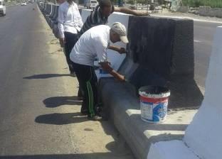 حملات نظافة مكبرة وإزالة التعديات في كفرالدوار وأبوحمص بالبحيرة