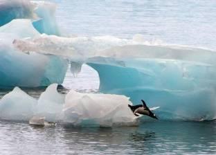 """""""دراسة"""": ذوبان الجليد في القارة الجنوبية يرفع منسوب البحار إلى 3 أمتار"""