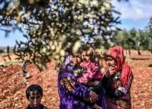 صحيفة إسبانية: تركيا تصدر زيت الزيتون «المنهوب» من عفرين السورية