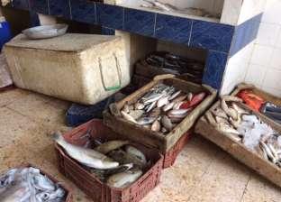 ضبط 220 كيلو سمك مجمد فاسد في المنوفية