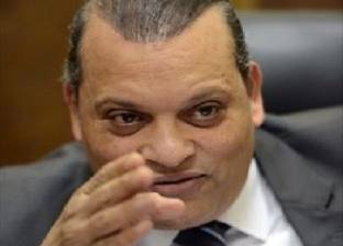 """الفضالي: مصر حذرت قبل أشهر من حوادث """"الذئاب المنفردة"""""""