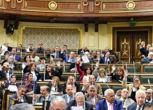 """""""خطة البرلمان"""" توافق على قرار رئيس الجمهورية بإصدار التعريفة الجمركية"""