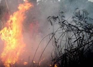 حرائق غابات تهدد قرى ألمانية وتجبر مئات الأشخاص على مغادرة منازلهم