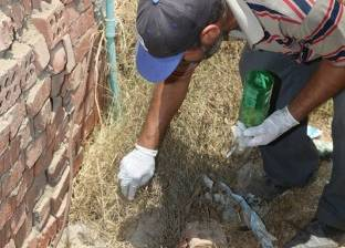 """مدير """"أزمات قويسنا"""" بالمنوفية: أعمال حفر وراء مهاجمة الثعابين للأهالي"""
