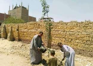 بالصور| قرية الروضة تستعد للمشاركة بمسابقة أجمل قرية في المنيا