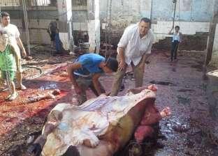 ضبط 12 حالة ذبح خارج المجازر الحكومية بالفيوم
