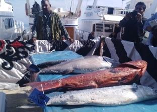 بالصور| ختام بطولة الجمهورية لصيد الأسماك بالغردقة بمشاركة 25 فريقا